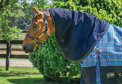 EQ Armour 1200 Neck Rug Navy