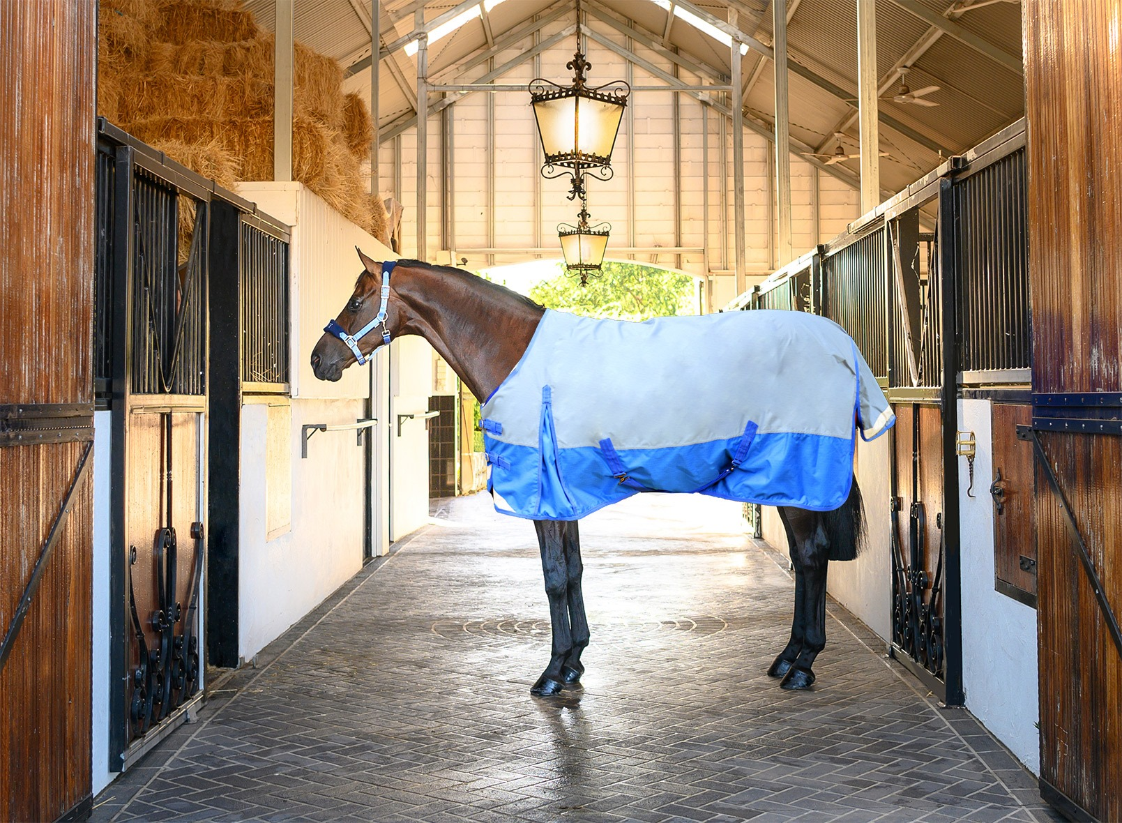EQ Armour Rainsheet Rug 600D