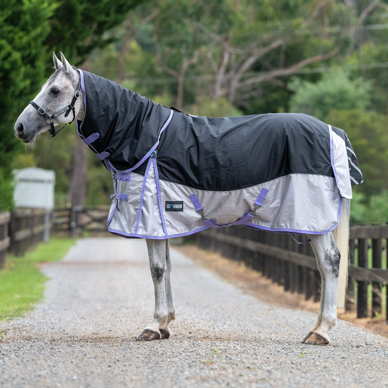 EQ Armour Summit 1680 Turnout Horse Rug with Detach-A-Neck