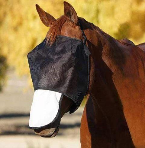FBD Fly Veil Mesh Standard Nose