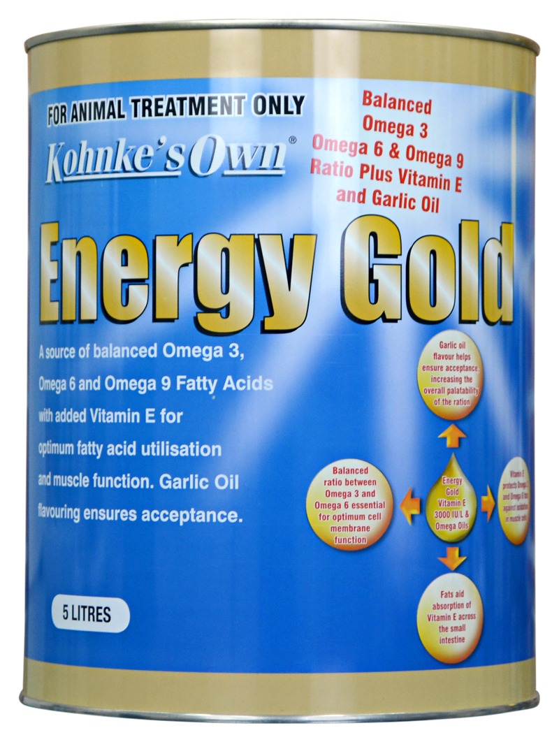Kohnkes Energy Gold