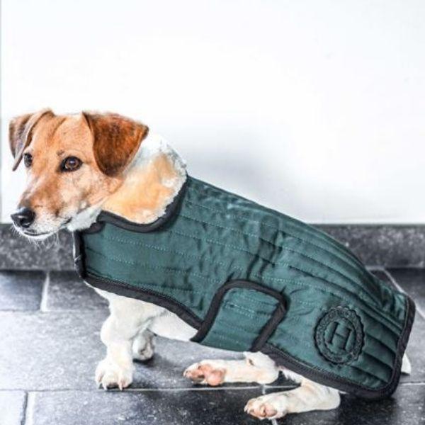 Harcour Code Dog Rug Jungle Green