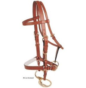 Jeremy & Lord Trail Riding Endurance Headstall