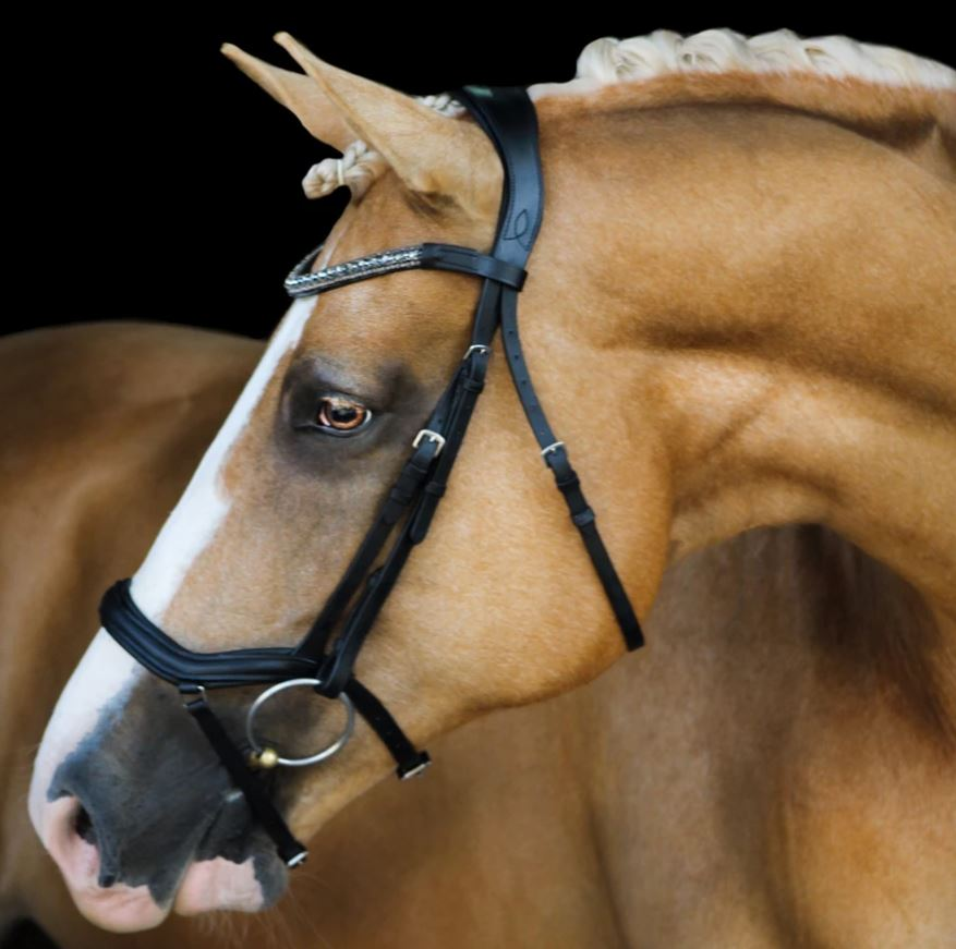 Lumiere Mila Bridle with Nappa Reins