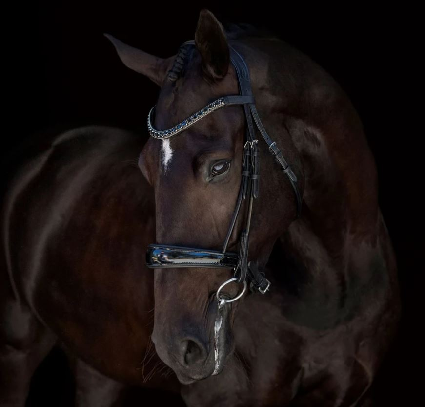 Lumiere Audrey Cavesson Bridle with Nappa Reins