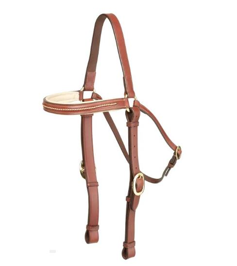 Oregon Plaited Brow Barcoo Bridle